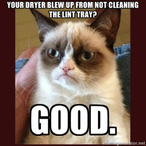 grumpy cat dryer lint
